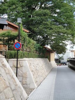 ケヤキの大木と石垣